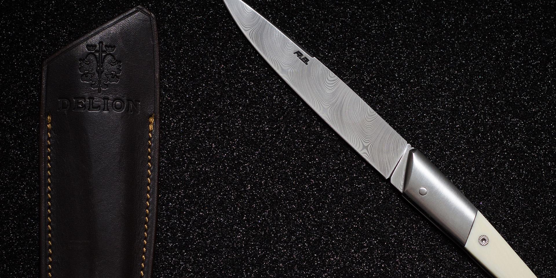 Le Lyonnais knife and Delion case