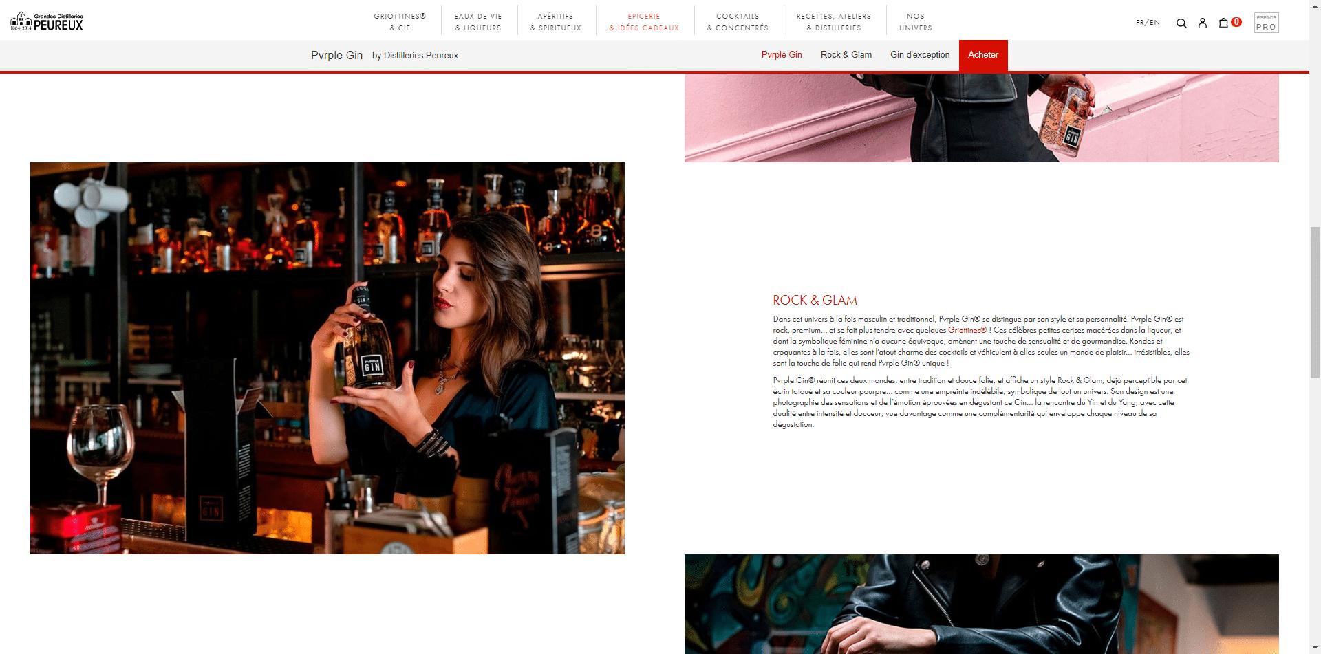 Webdesign Pvrple Gin